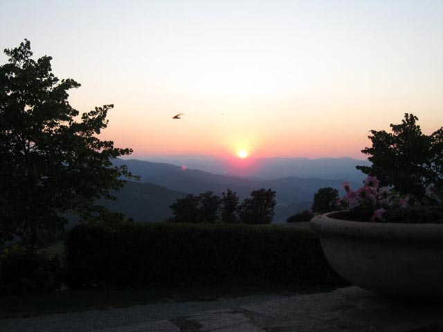 sunset-bird-on-the-wing-casa-passerini-in-mugello