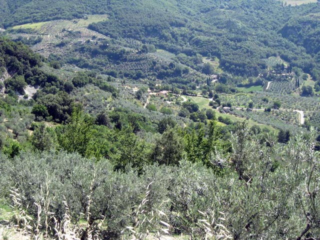 valley-below-collepino-once-farmed-by-village-people