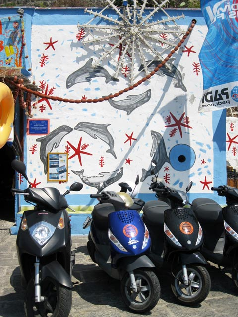 leaping-dolphins-on-scooter-rental-shop-wall-ustica
