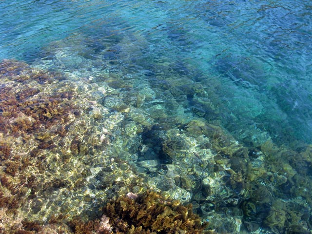 Giannutri-sea-clear-as-glass