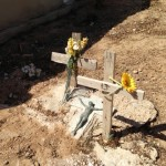 Immigrants burial plot in the Lampedusa cemetery - humble homage to those who did not make the trip alive-1