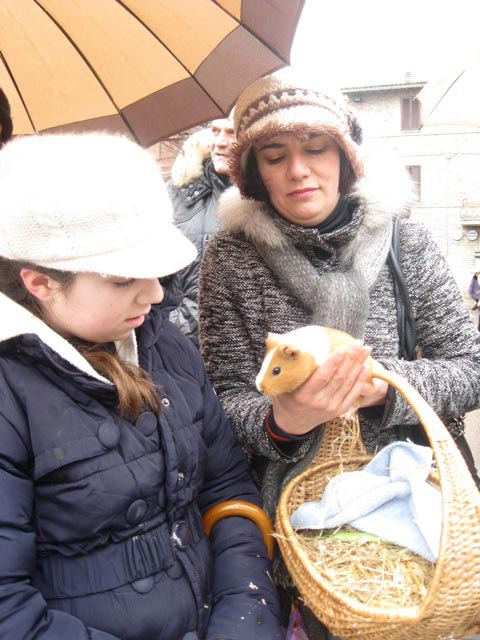 Young-Giulia-brings-her-guinea-pig-to-be-blessed