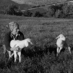 Our first lambs, 1975
