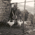 With my chickens, 1975