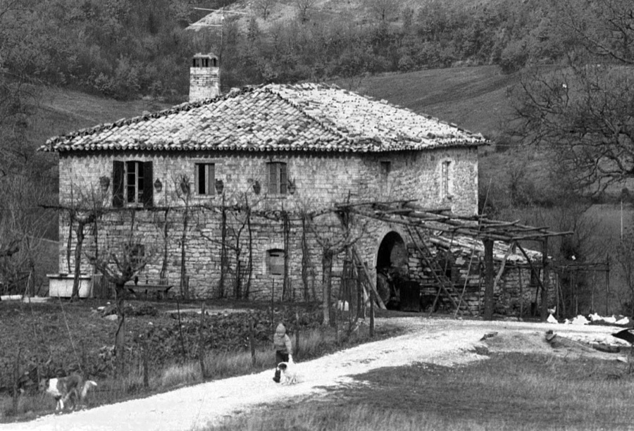 Our farmhouse before restoration
