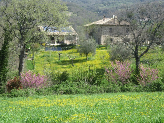 Our Assisi farmhouse, restored by Pino