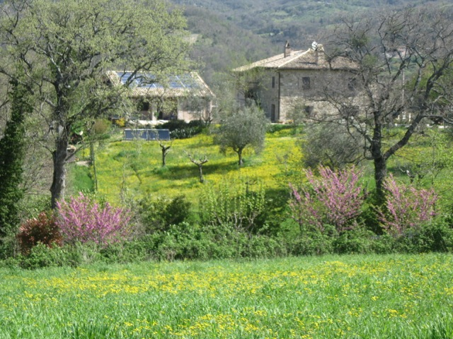 Our Assisi farmhouse restored by Pino - and behind, the guest house we now rent (solar panels on roof)