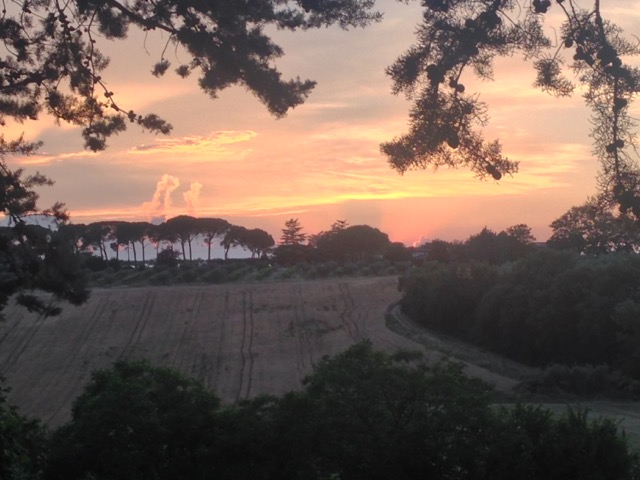 The sun was dropping behind a row of Mediterranean pines, lined up like a row of umbrellas