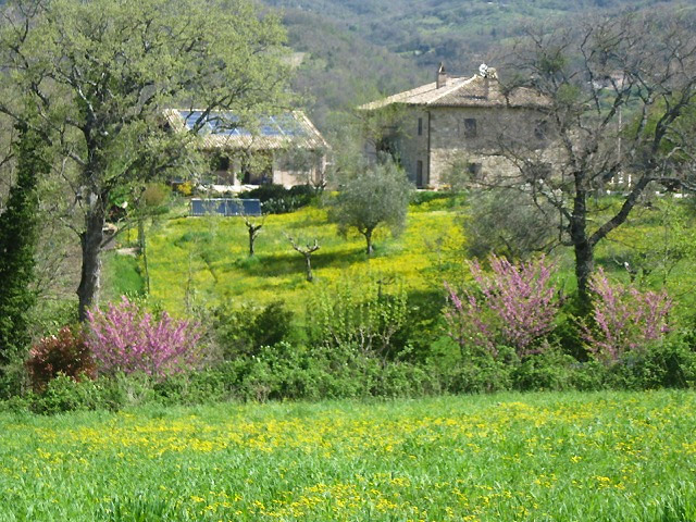 Assisi Farmhouse