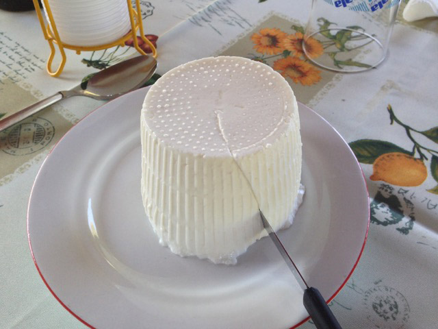 Ricotta di pecora from the Madonie mountains:  the best I have ever had