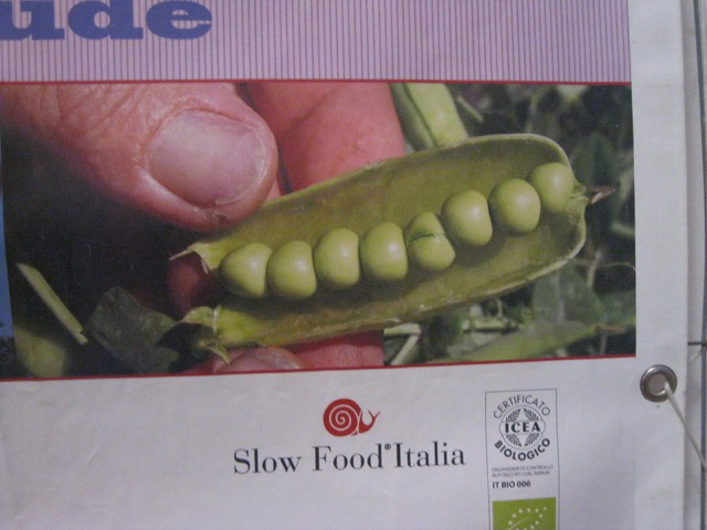 Slow Food now dedicated to the diffusion of the roveja legume