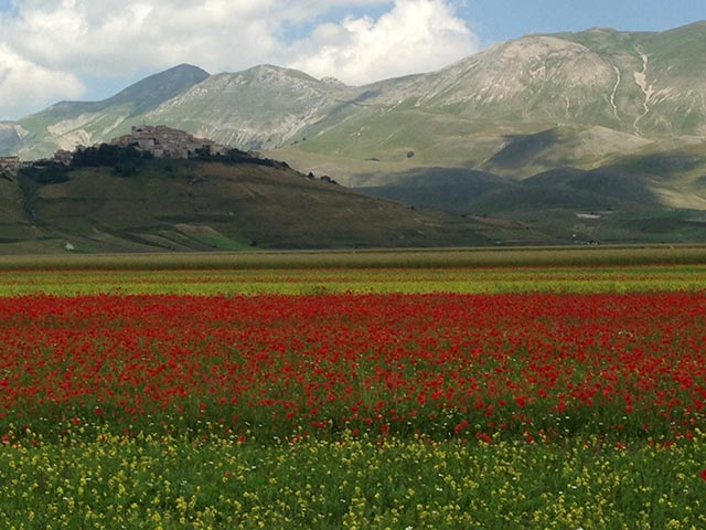 astounding-chromatic-majest-of-castelluccio