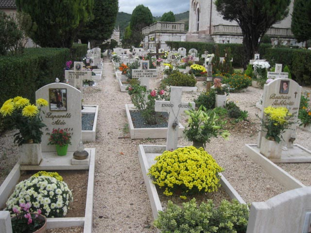 chrysanthemums-abound-in-late-fall-in-italys-cemeteries