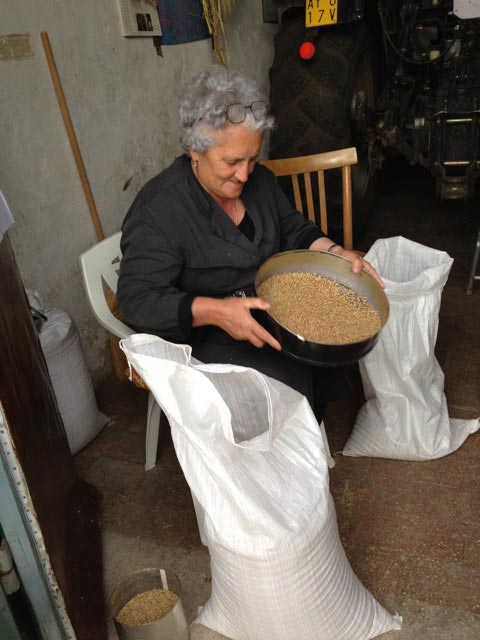 signora-derna-sifts-her-lentils-last-years