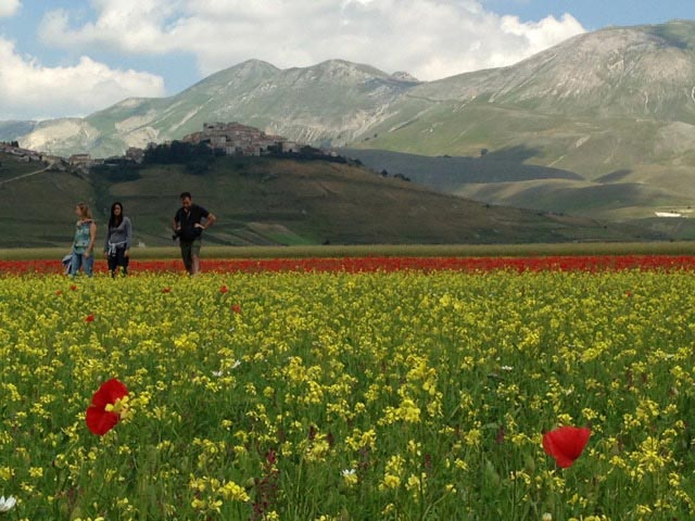 visitors-revel-in-the-chromatic-majesty-of-castelluccio