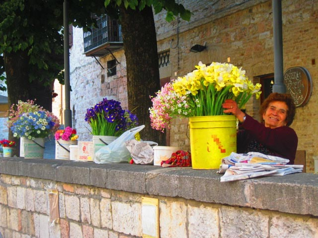 novella-with-flowers-along-the-wall