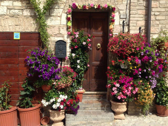 SPELLO-FLOWERING-STREET