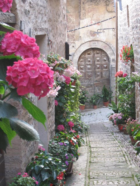 Spello-'s-medieval-backstreets-enchant