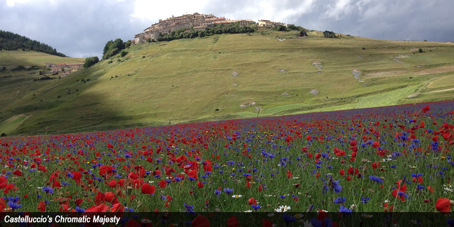 Castelluccio's Chromatic Majesty